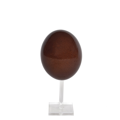 ostrich-egg-onstand-brown-front1