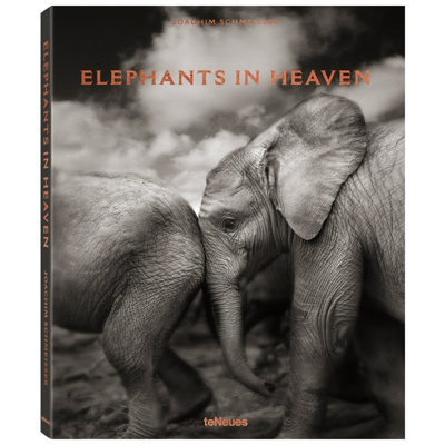 elephants-in-heaven-book-front1