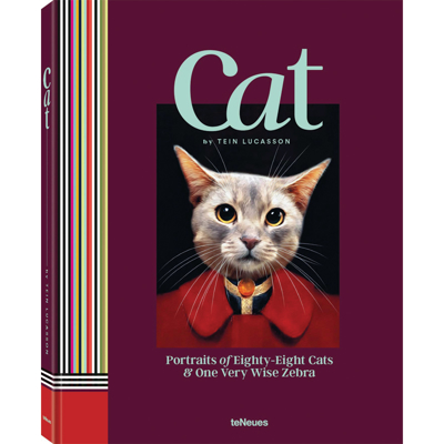 cat-book-front1