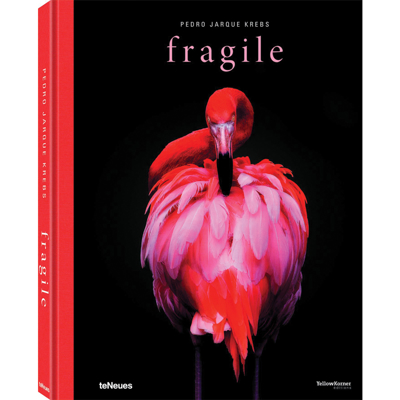 fragile-book-front1